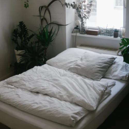 Materace twarde gwarancją zdrowego i komfortowego snu!